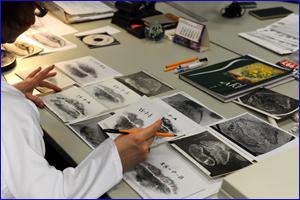 fingerprint recognition thesis reports